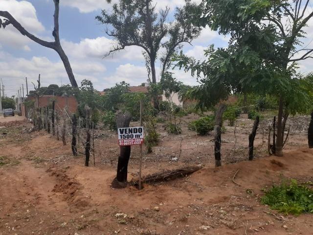 Vendo Terreno de esquina medindo 30 x 50 m em T. Lagoas.Ms - Foto 4