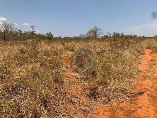 Fazenda 95 ha região chapada dos guimarães - Foto 4