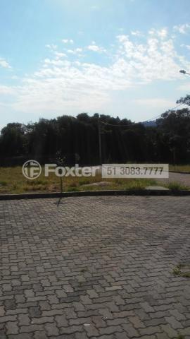 Terreno à venda em Campo novo, Porto alegre cod:190378 - Foto 6