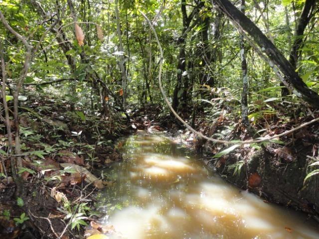 Sítio Chapada dos Guimarães 22 hectares - Foto 14