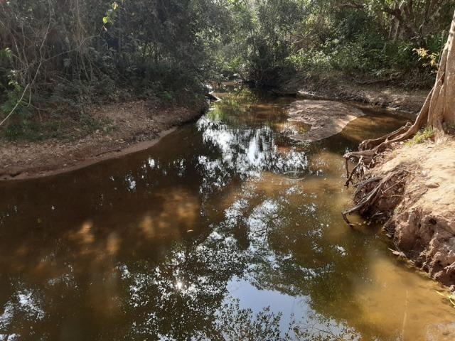 Chácara com 5 hectares na Agrovila das Palmeiras