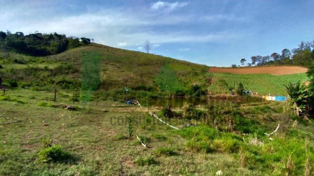 Ótima oportunidade para quem procura um terreno para formação de sitio em Pinhalzinho, Int - Foto 4