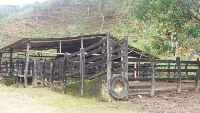 Serra de Japuíba Fazenda com 16 alqueires mineiros - Foto 18