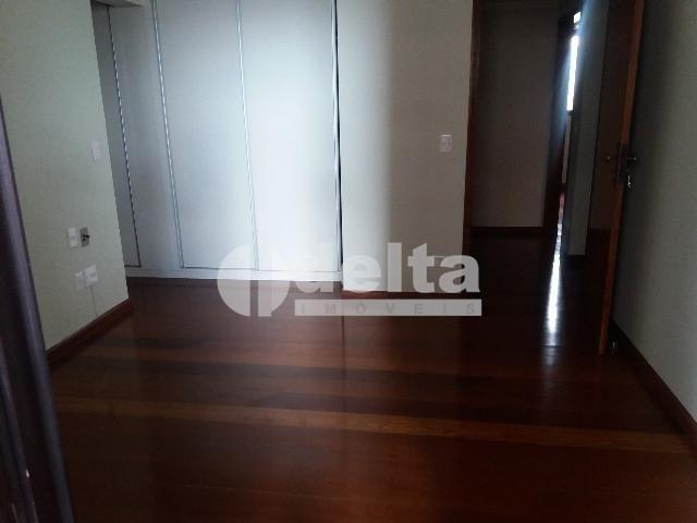 Apartamento para alugar com 3 dormitórios em Centro, Uberlandia cod:572064 - Foto 16