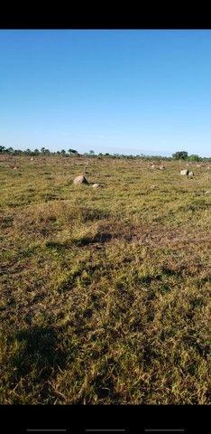 VENDA | Fazenda, em ZONA RURAL, Alto Boa Vista - Foto 5