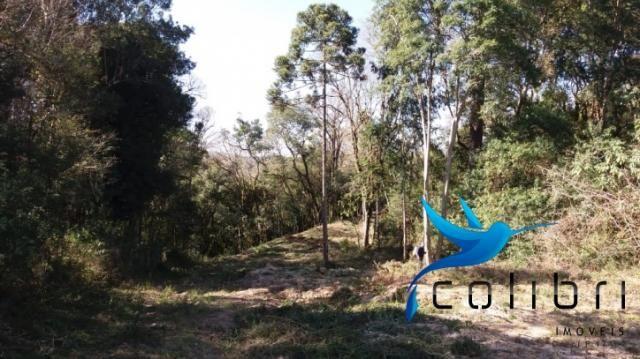 Terreno para formar chácara de lazer em Agudos do Sul - PR - Foto 11