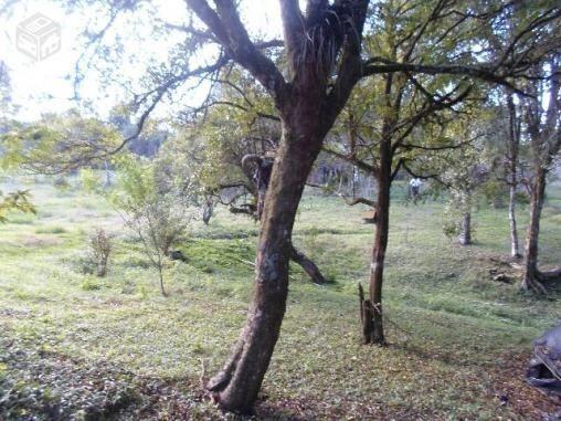 Chacara agudos do sul as margens pr 281 troco caminhao guincho munk - Foto 15