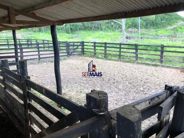 Fazenda à venda, por R$ 18.000.000 - Zona Rural - Ji-Paraná/RO - Foto 17