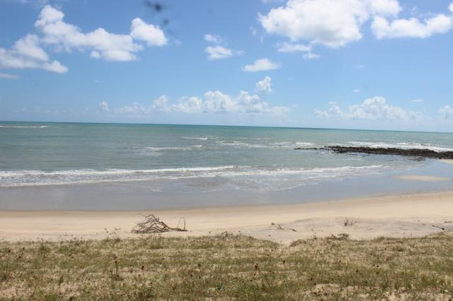 Excelente terreno beira mar na praia de Monte Alegre - TE0019