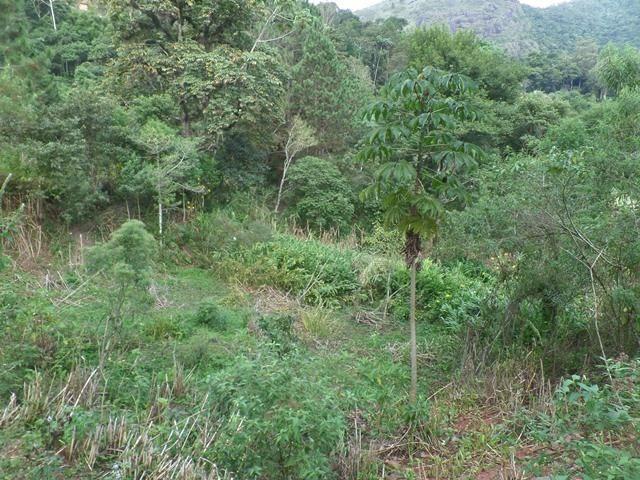 064 - Área de Terras nas Montanhas - Teresópolis - R.J - Foto 4