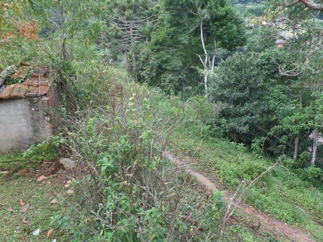 064 - Área de Terras nas Montanhas - Teresópolis - R.J - Foto 16