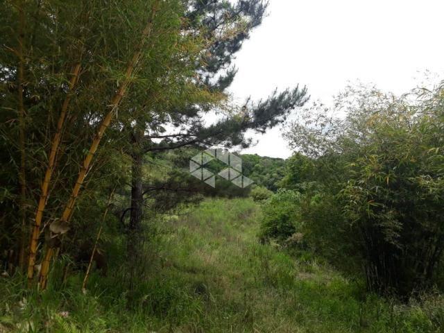 Chácara à venda com 1 dormitórios em Santa barbara, Monte belo do sul cod:9929336 - Foto 8
