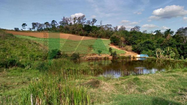 Ótima oportunidade para quem procura um terreno para formação de sitio em Pinhalzinho, Int - Foto 8