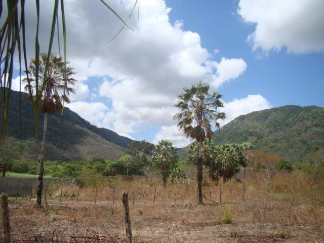 Sítio em Pacatuba, Ceará, Região Metropolitana de Fortaleza - Foto 12