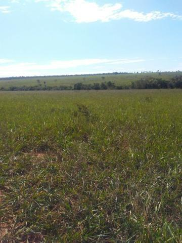 Terra para lavoura 30 km de Campo Grande - Foto 7