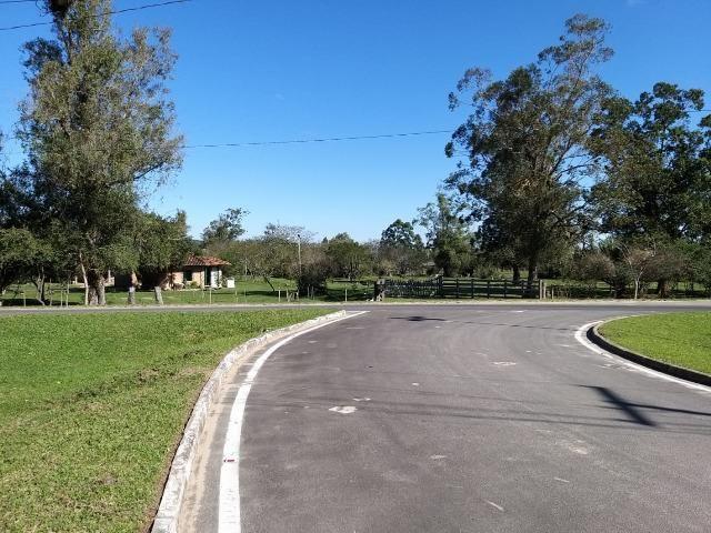 Sítio 2,9hec, no asfalto Lami POA/Itapuã, junto à rotatória, ótimo ponto comercial - Foto 10