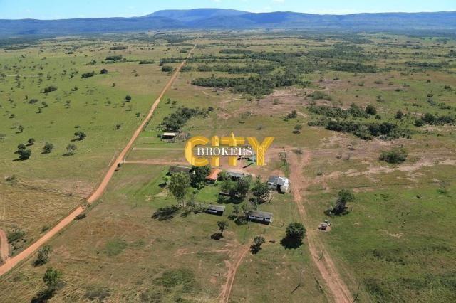 Fazenda na região rosário oeste - Foto 9