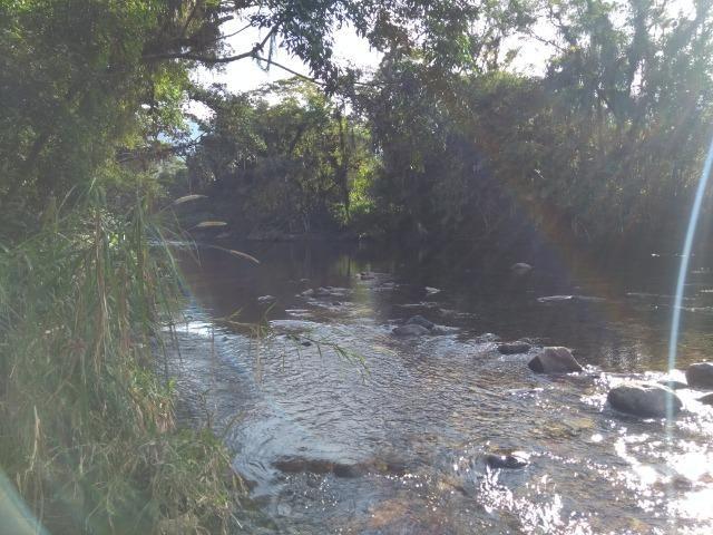 Área com 30 hectares com 600 metros de rio - Foto 5