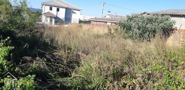 Terreno à venda em Pinheiro machado, Santa maria cod:10072 - Foto 4