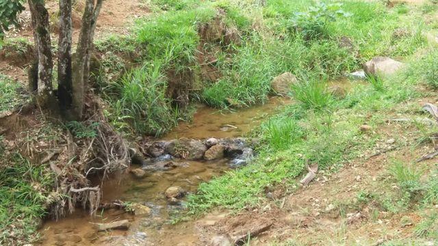 Serra de Japuíba Fazenda com 16 alqueires mineiros - Foto 15