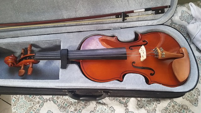 Violino Hofma 3/4 - Foto 2