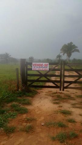 Vende-se uma fazenda!