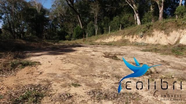 Terreno para formar chácara de lazer em Agudos do Sul - PR - Foto 8