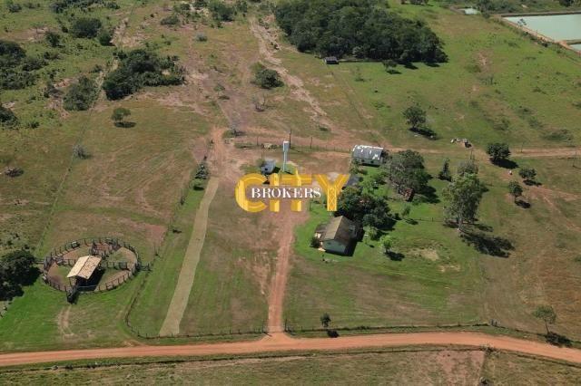 Fazenda na região rosário oeste - Foto 7