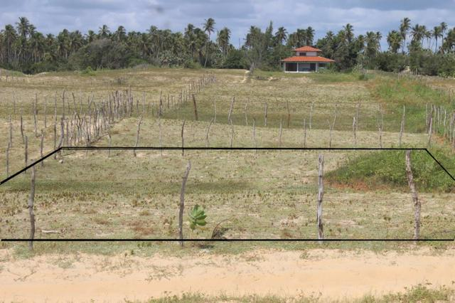 Excelente terreno beira mar na praia de Monte Alegre - TE0019 - Foto 7