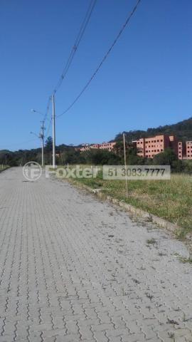 Terreno à venda em Campo novo, Porto alegre cod:190378 - Foto 5