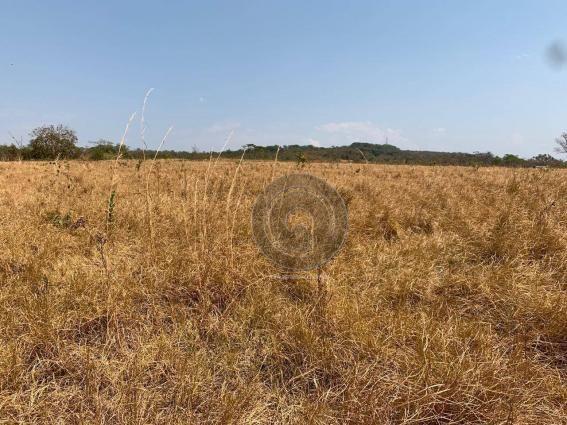 Fazenda 95 ha região chapada dos guimarães - Foto 11