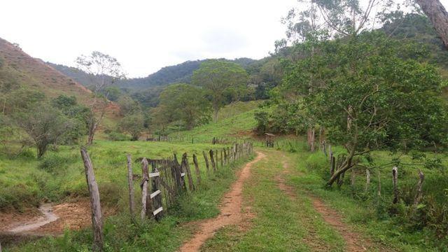 Serra de Japuíba Fazenda com 16 alqueires mineiros - Foto 19