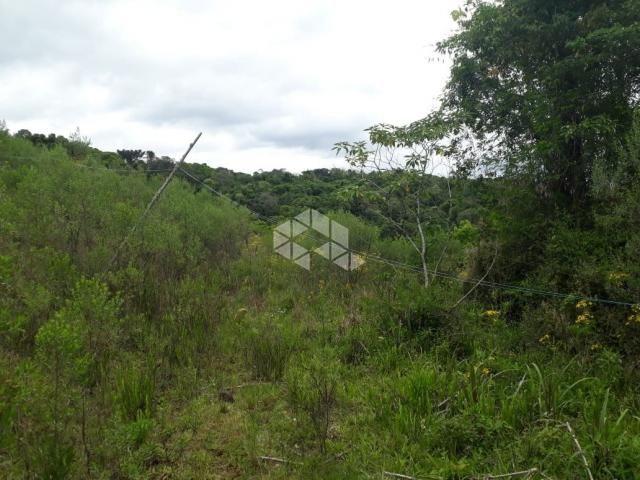 Chácara à venda com 1 dormitórios em Santa barbara, Monte belo do sul cod:9929336 - Foto 10