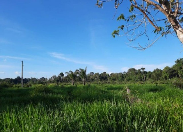 Fazenda financiada  - Foto 6