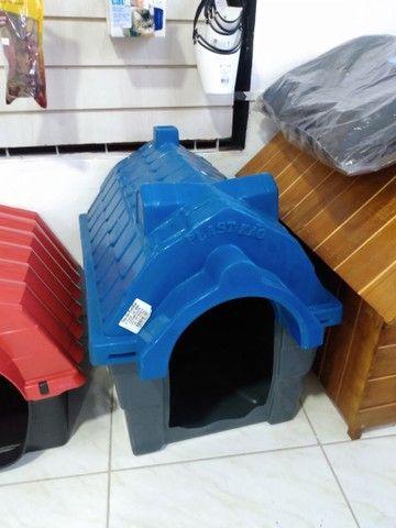 Acessórios cães e gatos - casinhas, caminhas, arranhadores - Foto 2