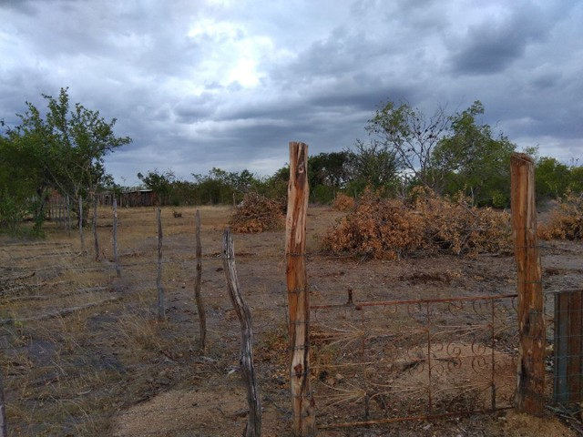 Vendo lote na fazenda São Bento a 3,5 km da sede - Foto 3