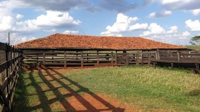 Fazenda na região Sud Menucci SP - Foto 5
