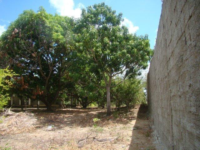 Sítio em Pacatuba, Ceará, Região Metropolitana de Fortaleza - Foto 16