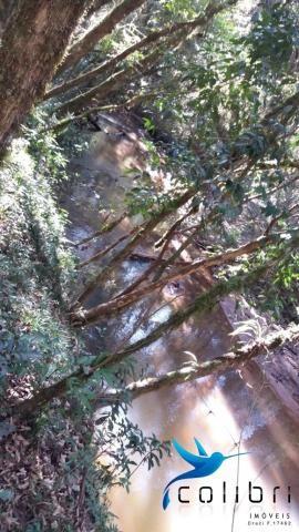 Terreno para formar chácara de lazer em Agudos do Sul - PR - Foto 3