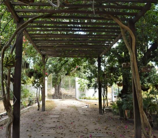 Apartamento para alugar com 3 dormitórios em Novo, Carpina cod:AL11JR - Foto 14