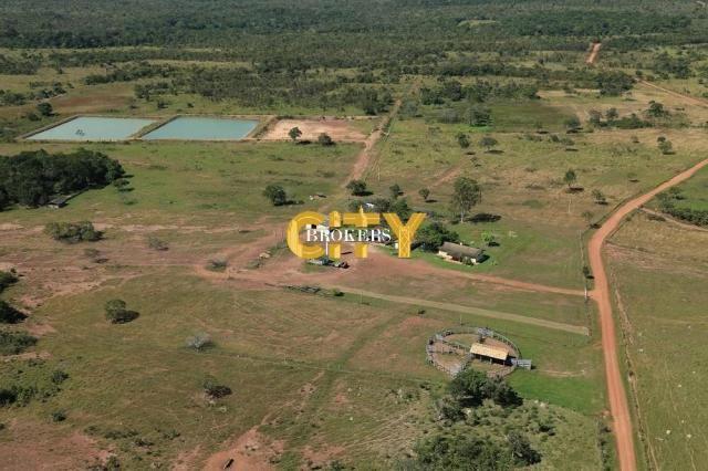 Fazenda na região rosário oeste - Foto 5