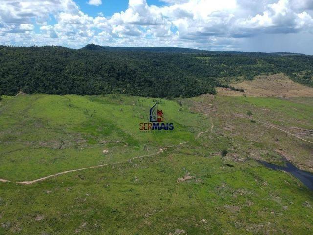 Fazenda à venda, por R$ 18.000.000 - Zona Rural - Ji-Paraná/RO - Foto 19