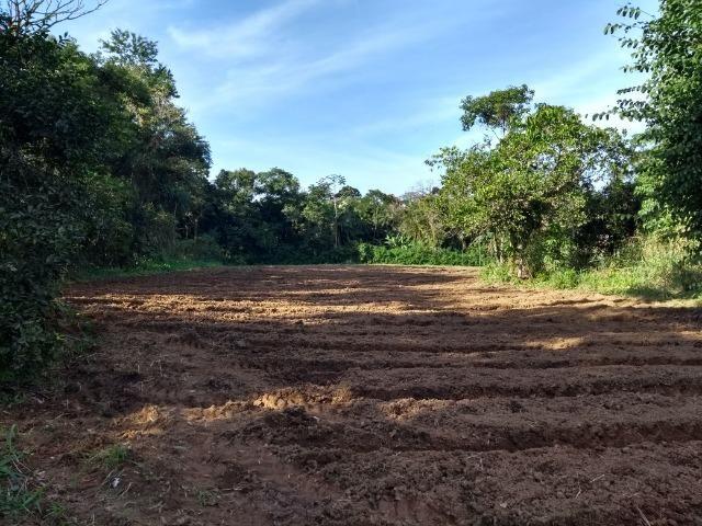 Área com 30 hectares com 600 metros de rio - Foto 12