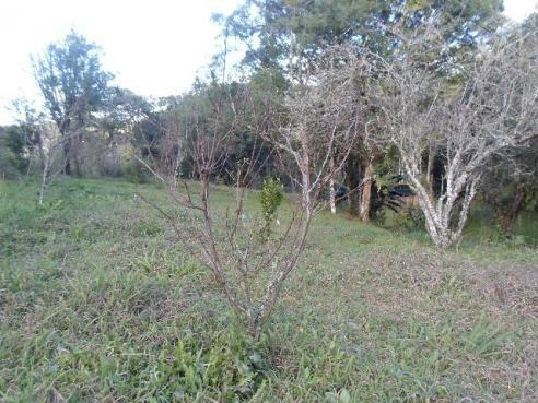 Chacara agudos do sul as margens pr 281 troco caminhao guincho munk - Foto 8