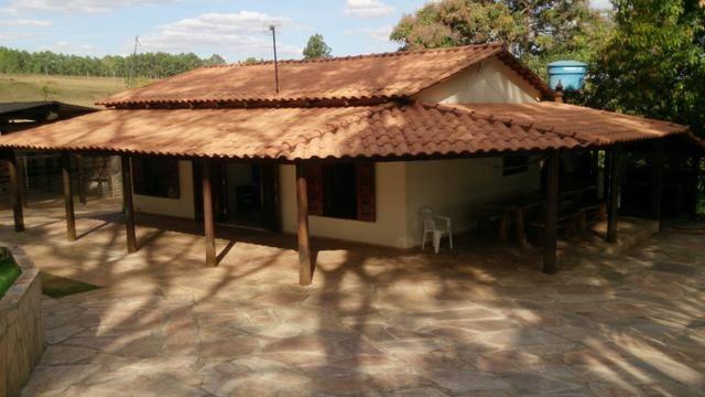 Chácara 18.000 m2 Formada Margens BR 414 Corumbá de Goiás - Foto 6