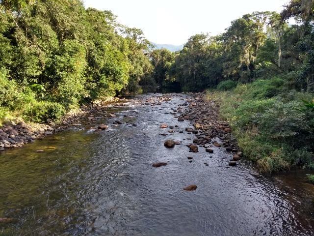 Área com 30 hectares com 600 metros de rio - Foto 10