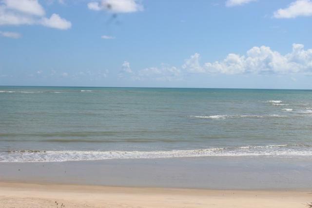 Excelente terreno beira mar na praia de Monte Alegre - TE0019 - Foto 3
