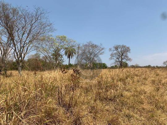 Fazenda 95 ha região chapada dos guimarães - Foto 2