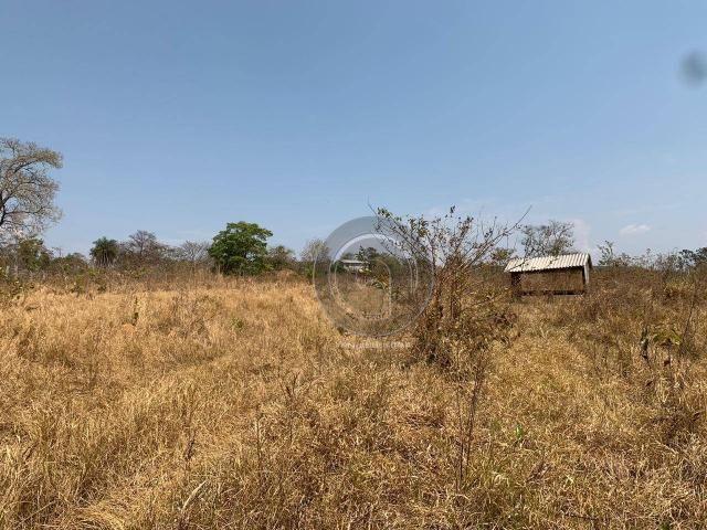 Fazenda 95 ha região chapada dos guimarães - Foto 9