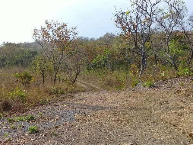 Chacara na regiao do aguacu - Foto 13